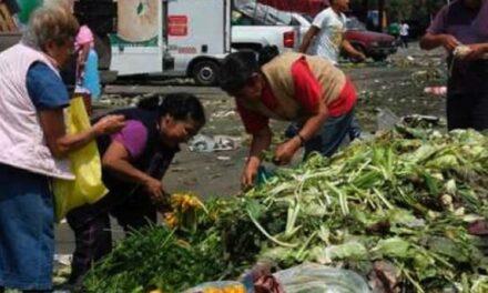 Se tiran 70 millones de toneladas de comida en México