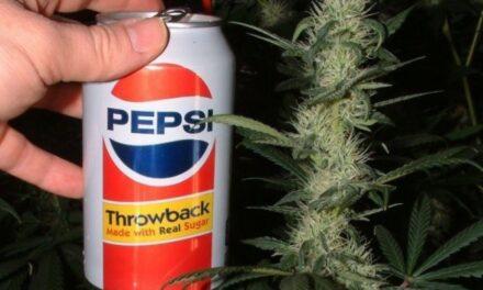 Pepsi también quiere unirse al negocio de las bebidas con marihuana