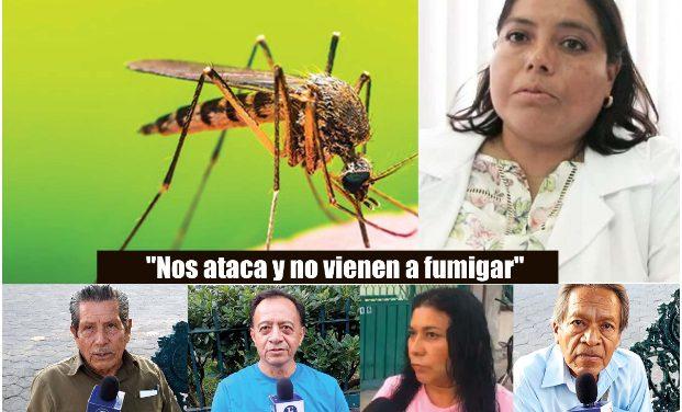 El dengue no da tregua en la Mixteca