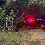 Hombre cae de una escalera y muere en Rancho Juanitos